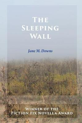 The Sleeping Wall by Jane M Downs