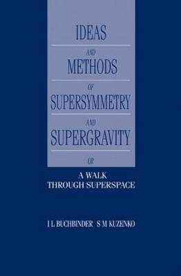 Introduction to Supersymmetric Field Theory by I.L. Buchbinder image