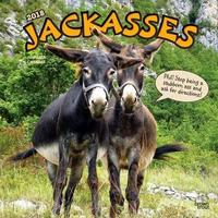 Jackasses 2018 Wall Calendar by Inc Browntrout Publishers