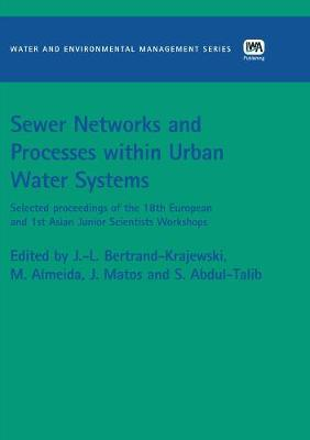 Sewer Networks and Processes within Urban Water Systems image