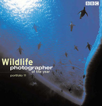 Wildlife Photographer Of The Year Portfolio 11 by Chris Packham image