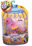 Little Live Pets Bird Single Pack - Sweet Sophie
