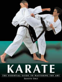 Karate by Sanette Smit image