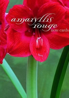 Amaryllis Rouge Note Cards by Starr Ockenga image