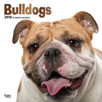 Bulldogs 2018 Square Wall Calendar by Inc Browntrout Publishers