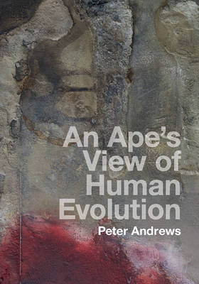 An Ape's View of Human Evolution by Peter Andrews image