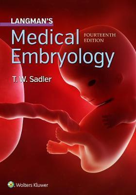 Langman's Medical Embryology by T W Sadler image