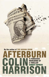 Afterburn by Colin Harrison image
