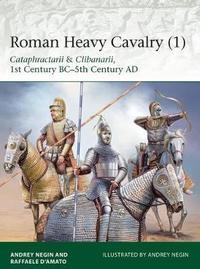 Roman Heavy Cavalry 1 by Raffaele D'Amato