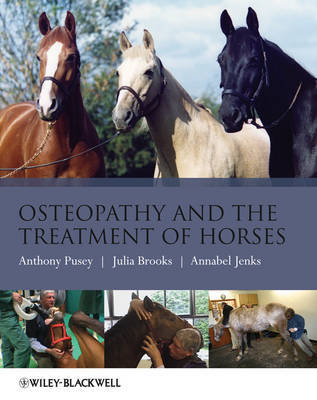 Osteopathy and the Treatment of Horses by Anthony Pusey image