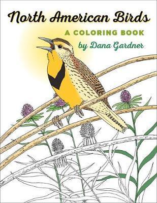 North American Birds by Dana Gardner image
