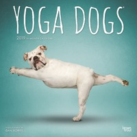 Yoga Dogs 2019 Square Wall Calendar by Inc Browntrout Publishers