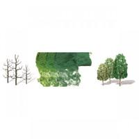 JTT: HO Sycamore Trees - 10 Pack