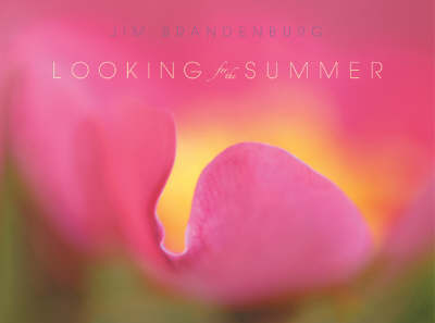 Looking for the Summer by Jim Brandenburg
