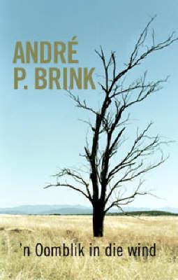 'N Oomblik in Die Wind by Andre P. Brink image