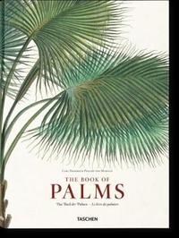 Martius: The Book of Palms by H.Walter Lack