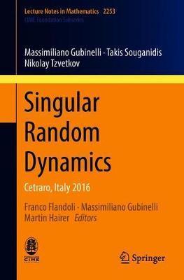 Singular Random Dynamics by Massimiliano Gubinelli