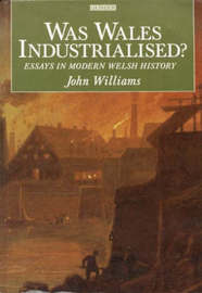 Was Wales Industrialised?: Essays in Modern Welsh History by John Williams image