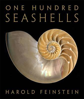 One Hundred Seashells by Harold Feinstein image