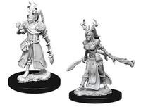 D&D Nolzur's Marvelous: Unpainted Miniatures - Female Human Druid image