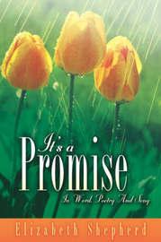 It's a Promise by Elizabeth Shepherd