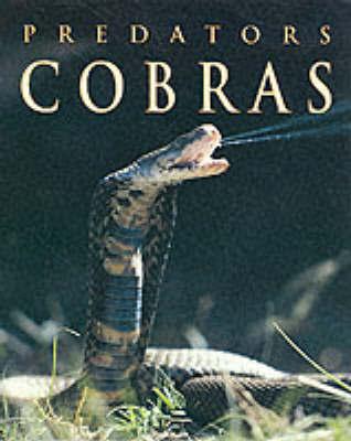 PREDATORS COBRAS image