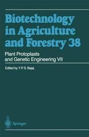 Plant Protoplasts and Genetic Engineering VII by Y.P.S. Bajaj
