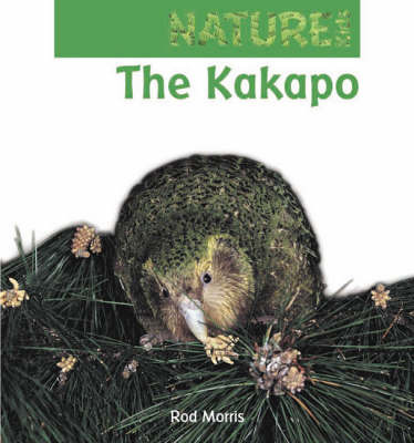 The Kakapo by Rod Morris