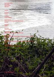 Dave Hullfish Bailey + Sam Watson - CityCat Project 2006-2016 by Rex Butler