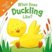 What Does Duckling Like (Touch & Feel) by Igloobooks image