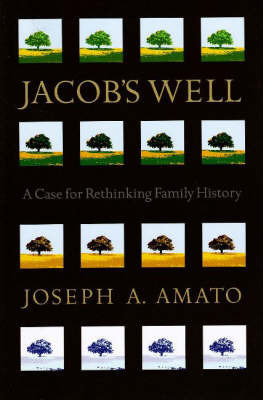 Jacob's Well by Joseph Anthony Amato