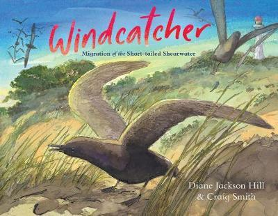 Windcatcher by Diane Jackson Hill
