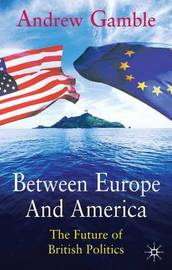 Between Europe and America image