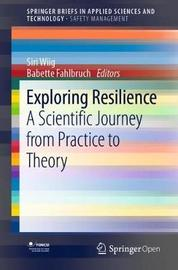 Exploring Resilience