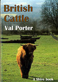 British Cattle by Val Porter image