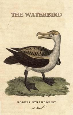 The Waterbird by Robert Strandquist image