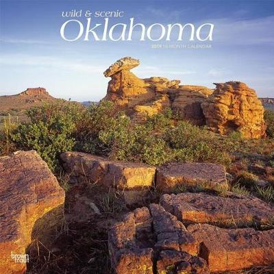 Oklahoma Wild & Scenic 2019 Square by Inc Browntrout Publishers