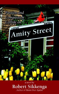 Amity Street by Robert Sikkenga