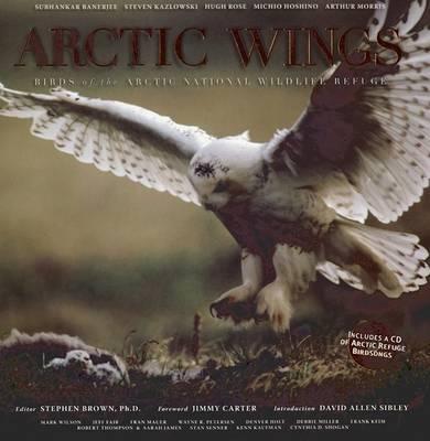 Arctic Wings: Birds of the Arctic National Wildlife Refuge