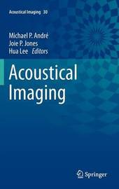 Acoustical Imaging image