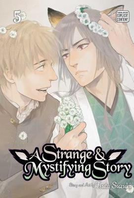 A Strange and Mystifying Story, Vol. 5 by Tsuta Suzuki image