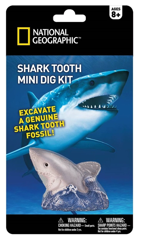 National Geographic: Shark Tooth - Mini-Dig Kit