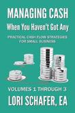 Managing Cash When You Haven't Got Any - Practical Cash Flow Strategies for Small Business by Lori Schafer