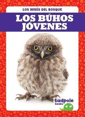 Los Buhos Jovenes (Owlets) by Genevieve Nilsen image