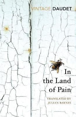 In the Land of Pain by Alphonse Daudet image