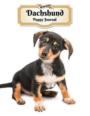 2020 Dachshund Puppy Journal by Notebooks Journals Xlpress image