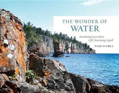 The Wonder of Water by Tom Hamel image