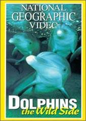 National Geographic - Dolphins - The Wild Side on DVD