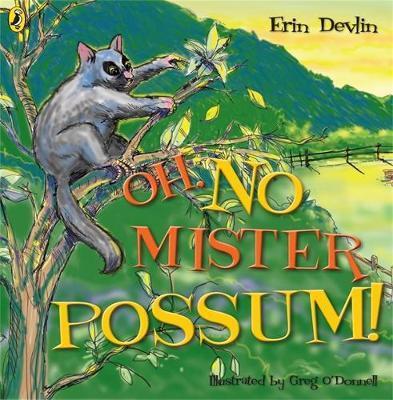 Oh, No Mister Possum! by Erin Devlin