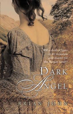 Dark Angel by Brian John image